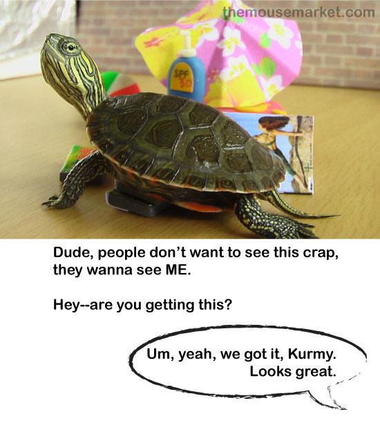 turtle9